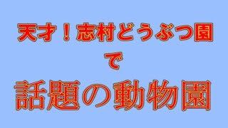 東筑波ユートピア http://h-yuutopia.com/ 料理動画は、こちら https://...