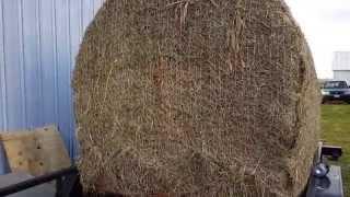 Bale blind for deer hunting