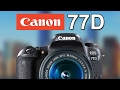 Canon 77D (800D, T7i) Preview! T6S/760D Replacement