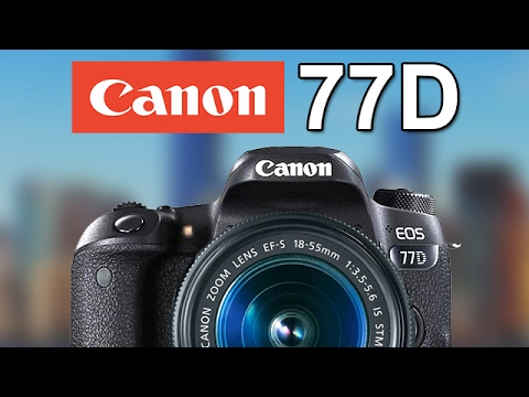 Canon 77D (800D, T7i)! T6S/760D Replacement