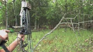 Belle Schmidt hunts a hog at Stone Creek Hunting Ranch