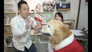 番組提供:ペットライン株式会社 http://www.petline.co.jp/ 今回はなん...