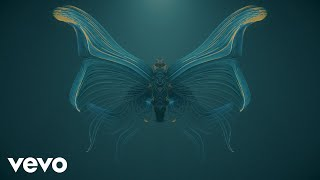 Ludovico Einaudi - Fly (Visualizer)