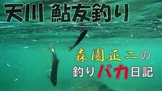 バリバスフィールドテスター 森園正二氏 と、その仲間たち (ヤジーマこ...