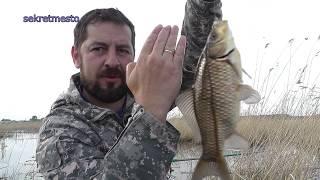 Рыбалка на реального карася  Ловля первых крупных карасей