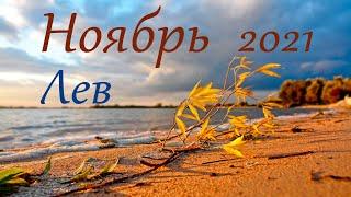 Лев Ноябрь 2021 Таро прогноз