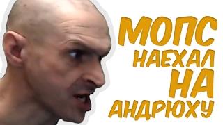 Мопс открыл рот на Андрюху