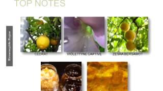 Kathy Snyder Aramis MP4 1Mbps Thumbnail
