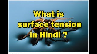 What is surface tension in Hindi? | Explain surface tension in Hindi | Define Surface tension