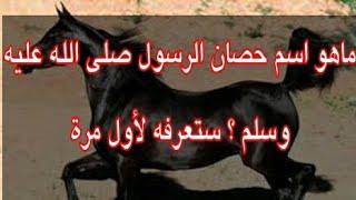 ماهو أسم حصان الرسول محمد معلومة جميلة جدا لانعلم بها من قبل Youtube