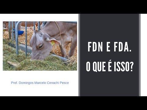 FDN e FDA - o que é isso?