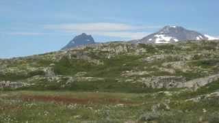 Steinrøysa neri bakken, sang  Torill Langenes