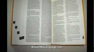 Quatro Lingual (Dutch, German, English, French) New Testament