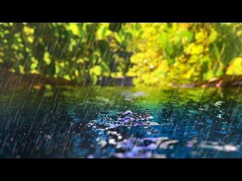 Rain Sounds + Gentle Stream  Sleep, Study, Focus  White Noise 10 Hours
