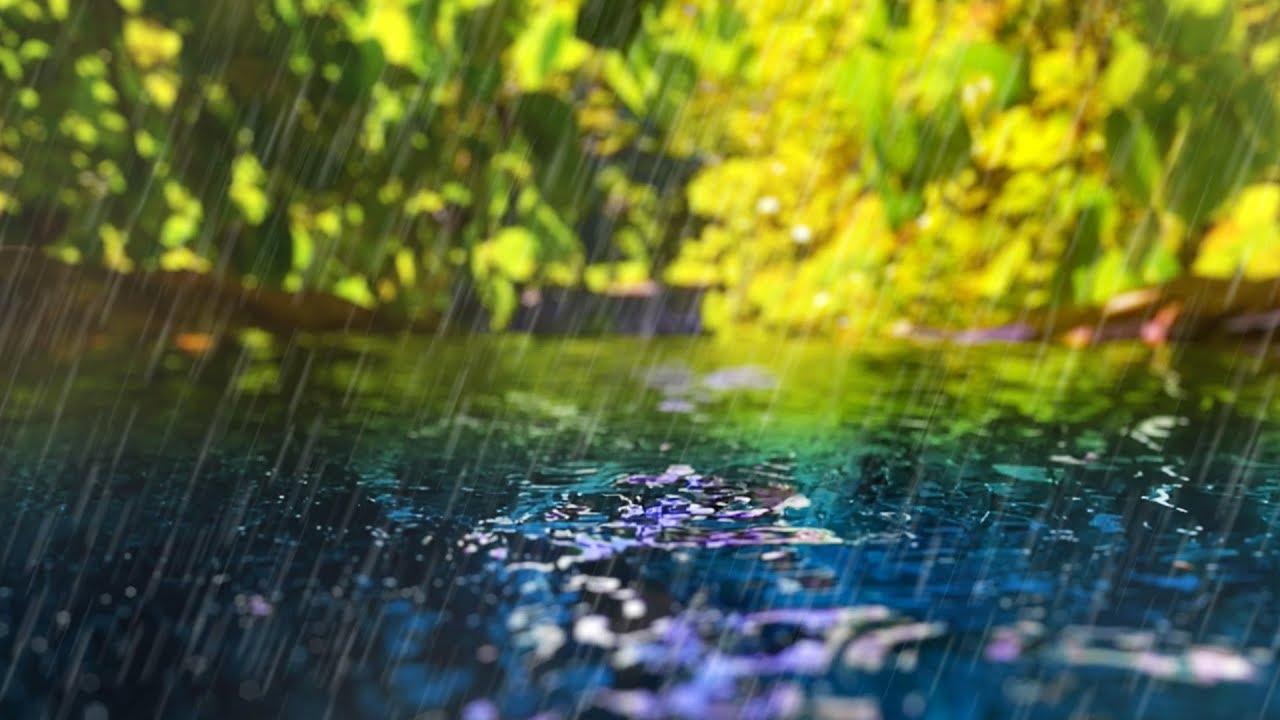 After Rains Fog Rolls Into Madison >> Rain Sounds Gentle Stream Sleep Study Focus White Noise 10