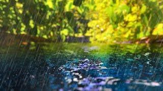 Rain Sounds + Gentle Stream | Sleep, Study, Focus | White Nois…