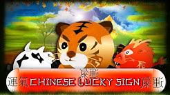 Chinese Lucky Sign - Buy Online Slot Game - CasinoWebScripts