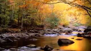 تلاوة خاشعة - ادريس ابكر    ( آيات قصة موسى عليه السلام )