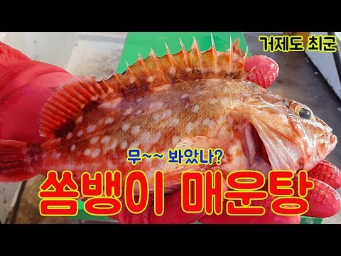 쏨뱅이 매운탕!! 그리고 간단한 해물 손질!! 항상 감사합니다. How to make a sashimi!!