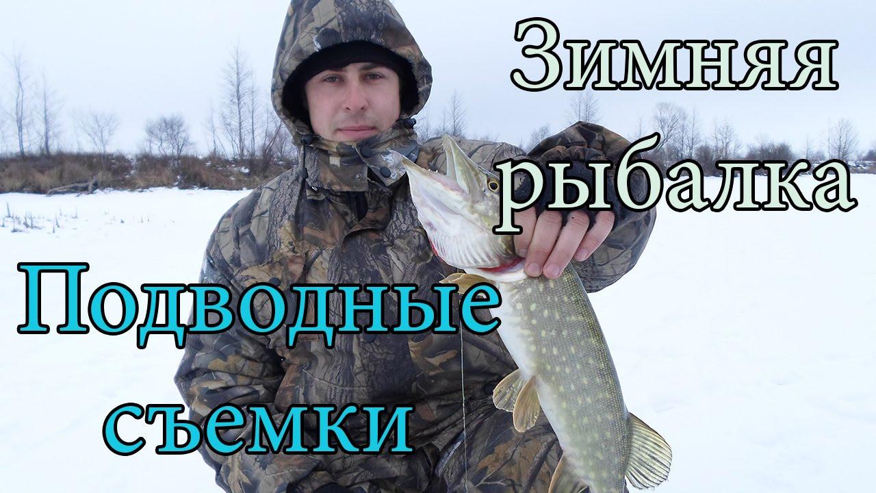 подкормка для зимней рыбалки на окуня