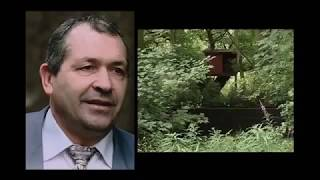 "Britains Richest Criminal - John ""Goldfinger"" Palmer Documentary [HD]"