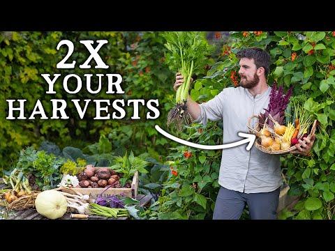 3 Simple Ways to Double Vegetable Garden Yields