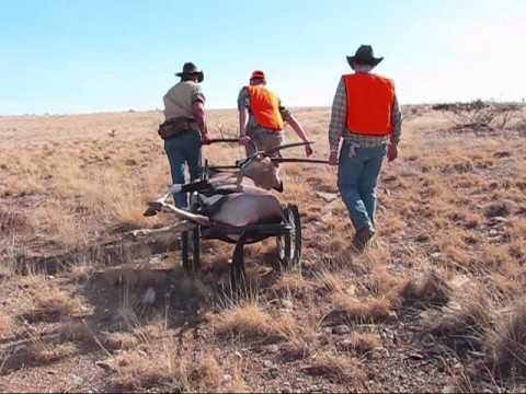 Oryx Hunt NM