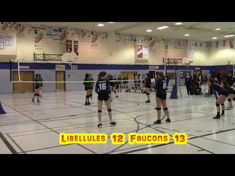 Volleyball féminin 16U