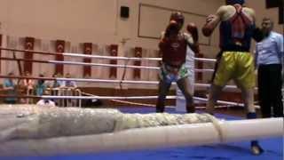 selman yücel muay thai  türkiye şampiyonası