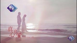 【MV大首播】王中平vs一綾-真心真愛(官方完整版MV)HD【三立八點檔『一家人』片頭曲】