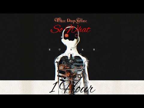 Three Days Grace: So What - 1hour