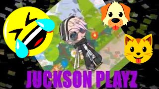 TRY NOT TO LAUGH JUCKSON PLAYZ FUNNY CATS AND DOGS COMPILATION