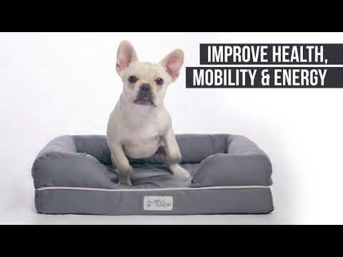petfusion-ultimate-dog-bed-&-lounge---solid-orthopedic-memory-foam-base
