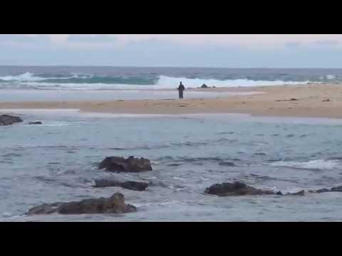 Mystery Bay & Montague Island, NSW South Coast, Australia