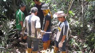 Video Ulu Sikat, Mukah-Peat Depth mapping, 24 May, 2012 download MP3, 3GP, MP4, WEBM, AVI, FLV Desember 2017
