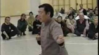 chen xiao wang demonstrating fajin