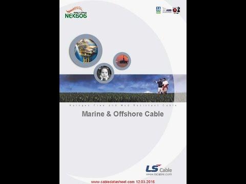 LS Cable NEK TS 606