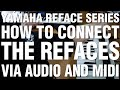 How To Connect The Refaces Via Audio And Midi
