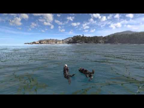 Habitat Earth - Flat - English - Trailer thumbnail