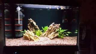 zetlight lancia zp 4000 438 waterproof aquarium led light plant