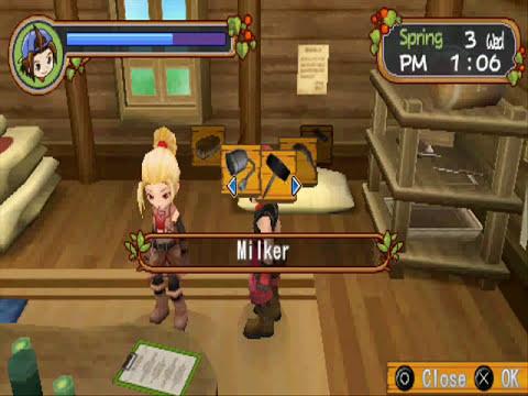 Harvest Moon Hero Of Leaf Valley AMV (Gwen)
