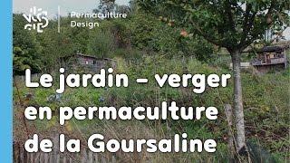 Le jardin potager en permaculture de la Goursaline août 2015