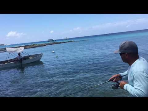 Tarpon Fishing Grand Cayman