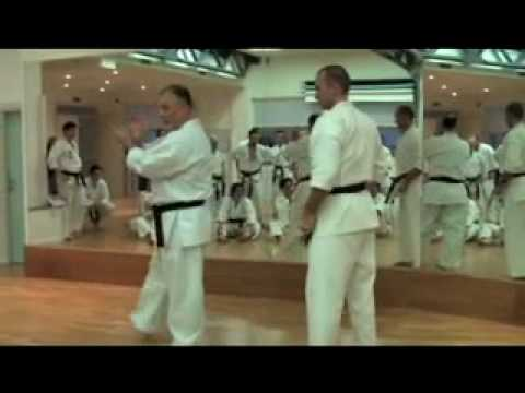 Karate Makotokai instructional video