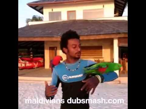 Maldivians Dubsmash