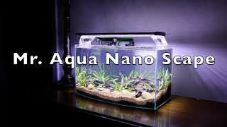 Mr. Aqua Nano Scape