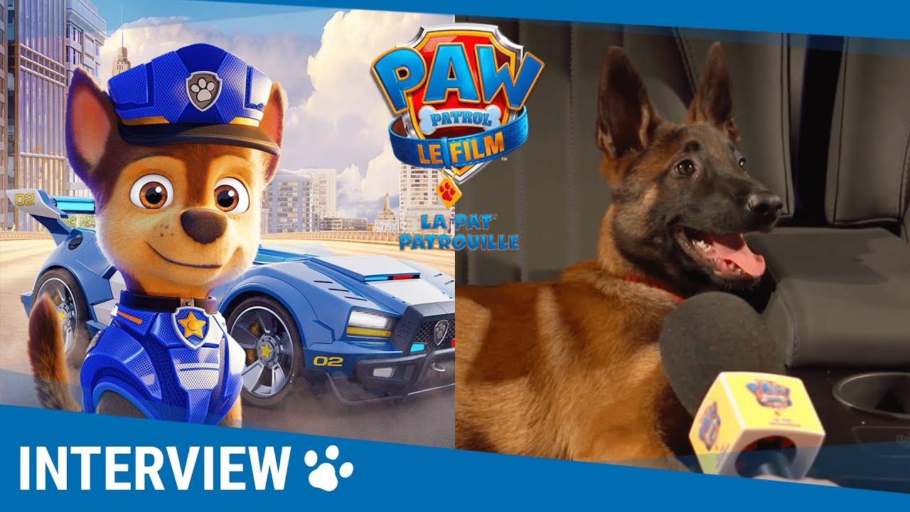 LA PAT' PATROUILLE LE FILM - Les chiens l'ont adoré [Au cinéma le 11 août]
