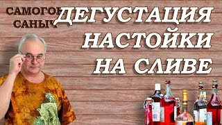 Дегустация СЛИВЯНКИ - КЛАСС! / Рецепты настоек / #СамогонСаныч