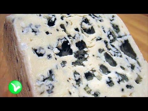 Почему стоит есть сыр с плесенью? Польза или вред для организма?