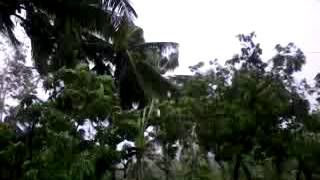 SUPER typhoon Bagyong Yolanda 2013 in BOGO CITY,CEBU